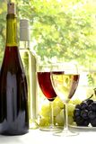 Wine. Glasses filled with wine and wine bottles stock photos