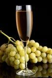 wine Royaltyfri Fotografi