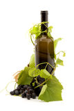 Wine. Bottle of wine studio isolated Stock Photo