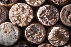 Wine Crystals on old Corks Stock Photo