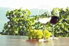 Wine ad grapes. Royalty Free Stock Images