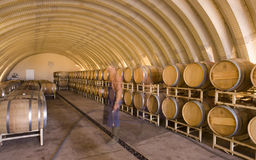 Wine Ages in Barrels, Ghose Image of Winemaker Royalty Free Stock Photo