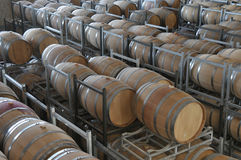 Wine aging in barrels Stock Photography