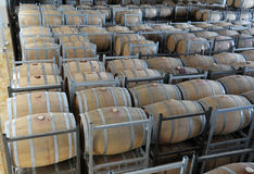 Wine aging in barrels Royalty Free Stock Photography