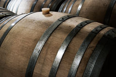 Wine aging in Oak Barrels Royalty Free Stock Photos