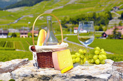 Free Wine And Grapes Royalty Free Stock Photography - 32364057