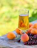 Wine with apricots and cherries Stock Photos