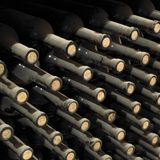Wine archive Royalty Free Stock Image