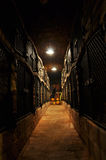 Wine archive Stock Image