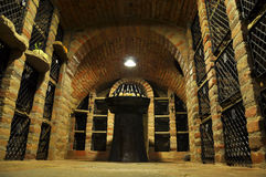 Wine archive Stock Photography