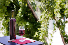 Free Wine At Table Stock Photos - 10231353