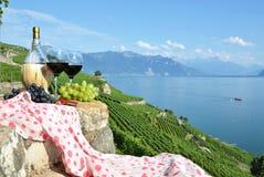 Wein in Lavaux Region, die Schweiz Lizenzfreies Stockbild