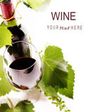Wine Background 1 Royalty Free Stock Photos