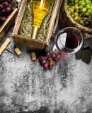 Wine background. Red and white wine from fresh grapes. Royalty Free Stock Photo
