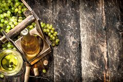 Wine background. White wine on a stand with branches of fresh grapes. Stock Photos