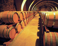 Wine barels in the basement Royalty Free Stock Image