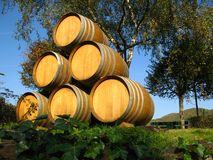 Wine barrel. A stack of wine barrel Stock Photography