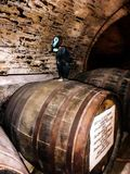 Wine barrel and a black cat Royalty Free Stock Photography