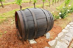 Wine barrel Royalty Free Stock Images