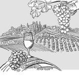 Wine barrel grapes and landscape Illustration royalty free illustration