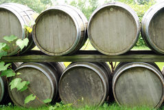 Wine Barrel Stack Stock Photography