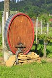 Wine barrel in the vineyard Royalty Free Stock Images