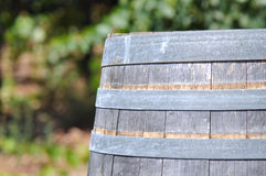 Wine Barrel and Vineyard Royalty Free Stock Photo
