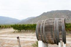 Wine Barrel in Vineyard - Cafayate. Argentina royalty free stock photography