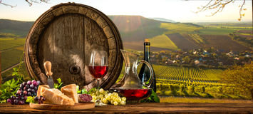 Wine barrel on vineyard. Barrel with glas of red wine and cheese on vineyard Royalty Free Stock Image