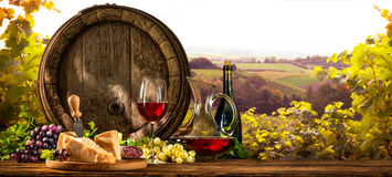 Wine barrel on vineyard Royalty Free Stock Images