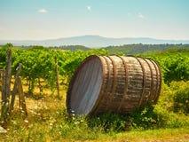 Wine Barrel Vineyard Stock Photo