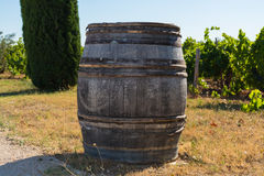 Wine barrel on vineyards in chateau, Châteauneuf-du-Pape, Franc Stock Photo