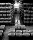 Wine Barrel Warehouse Royalty Free Stock Photo
