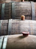 WIne barrel. With wooden bung in the Kakheti wine region, Georgia, Caucasus stock photography
