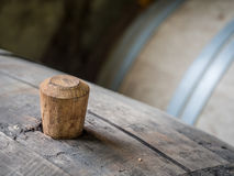 Wine barrel Stock Image