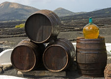 Wine  barrels. On background  vines and mountains , Lanzarote; Canary islands Stock Photography