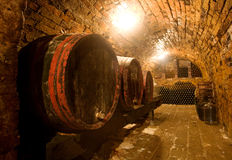 Wine barrels. Vand bottles in the back in a cellar . Warm colors, wide angle view Stock Photography