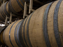 Wine Barrels Stock Images