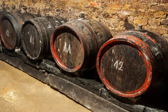 Wine barrels. In an old cellar Stock Photography