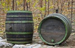 Wine barrels. Old wine barrel at vineyard Stock Image
