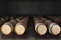 Wine barrels. Oak wine barrels in a modern winery, Alentejo, Portugal Stock Photography