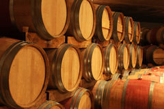Wine barrels. In a wine cellar Royalty Free Stock Photos