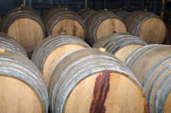 Wine barrels in arrangement waiting in a cellar Stock Photo