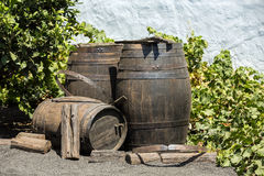 Wine barrels on background wall Stock Photo