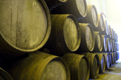 Wine barrels in cellar Royalty Free Stock Image