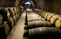 Wine barrels in cellar. Wide angle view Royalty Free Stock Images