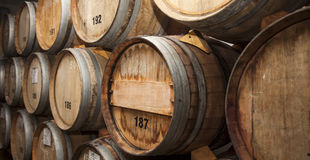 Wine barrels in cellar. Cavernous wine cellar with stacked oak barrels stock images