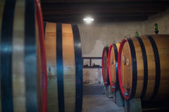 Wine Barrels in cellar royalty free stock photography