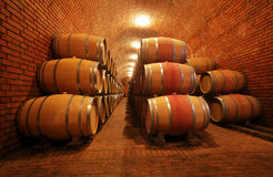 Wine barrels in cellar Stock Photography