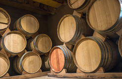 Wine barrels in Cellar of Syrah, Elqui Valley, Andes, Chile Stock Photography